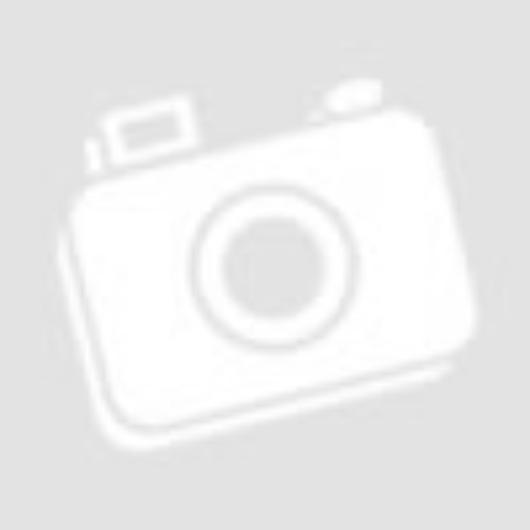 Gorenje GI52040X beépíthető mosogatógép 9 terítékes látható inox kezelőpanelea